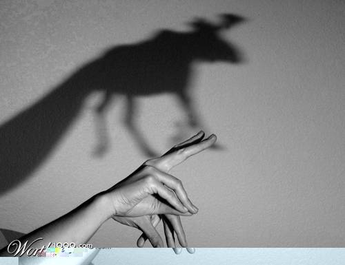 1115 30 Examples Of Shadow Photography Taken at Perfect Time