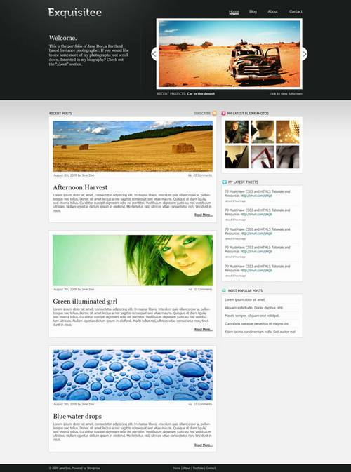 89 20 Brilliant  And Free PSD Website Templates