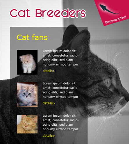 Cat Breeders - free facebook template
