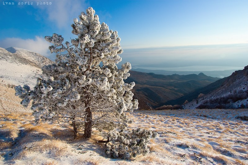 A_cold_day_in_the_mountain_II_by_ivan_c
