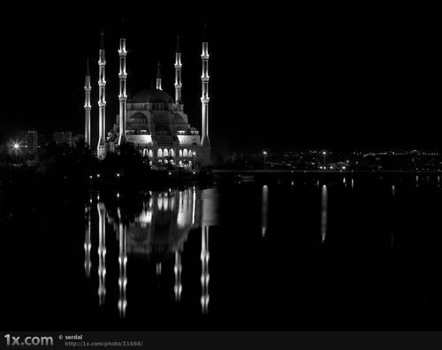 ASSC © serdal