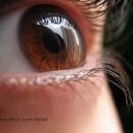20 Beautiful Examples Of Macro Eye Photography