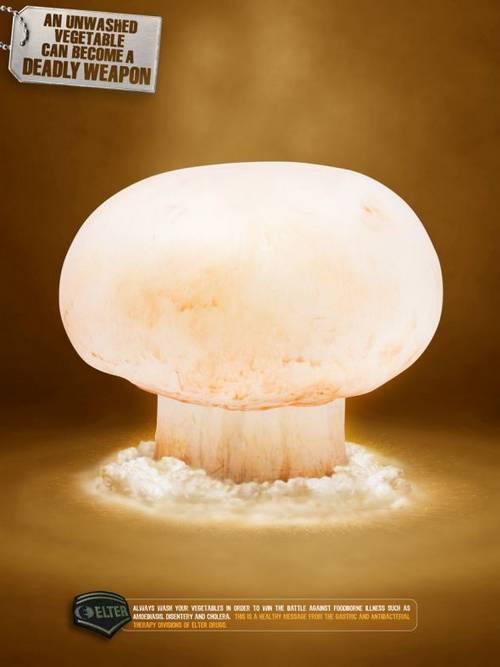 Elter Drugs: Mushroom