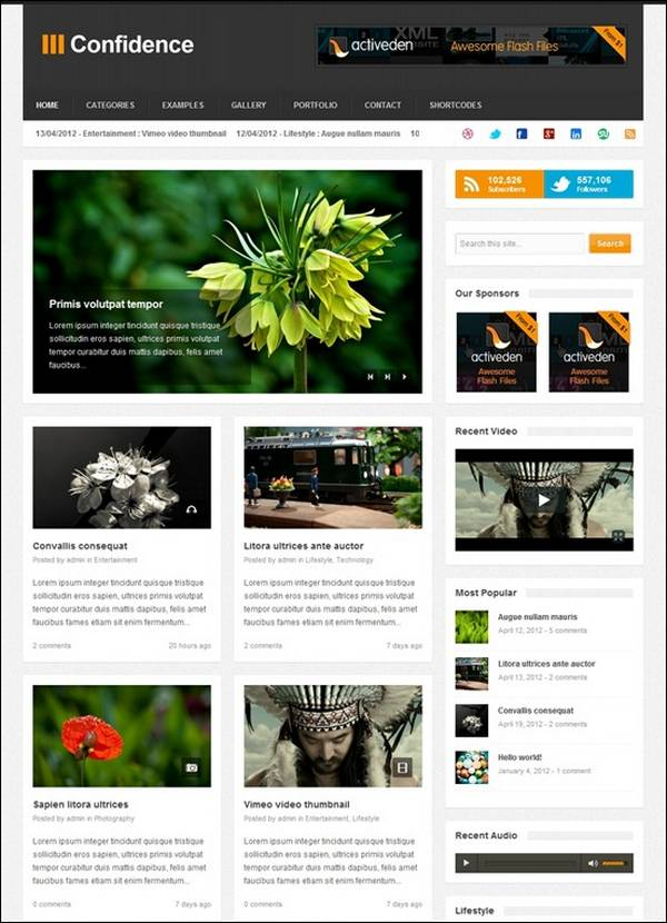 Confidence – Responsive Blog / Magazine Theme