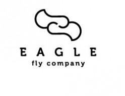 Eagle Fly - eagle based logos