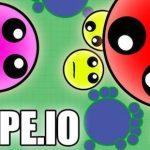 Mope.io – Massive Multiplayer Online (MMO)