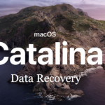 How to Undeleted Files From Emptied Trash in macOS Catalina